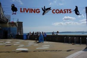 Devon Living Coasts