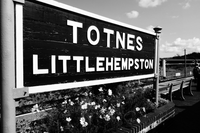 Devon Totnes Littlehempston sign