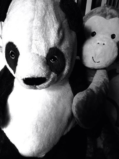 Monkey and Panda