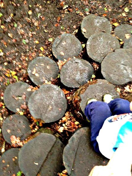Box Hill - stumps